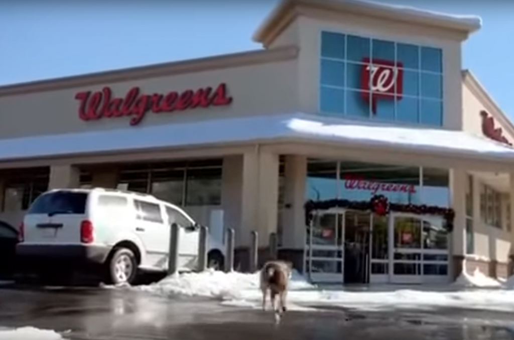 Ideal Shield's grey bollard covers in a Walgreen's commercial
